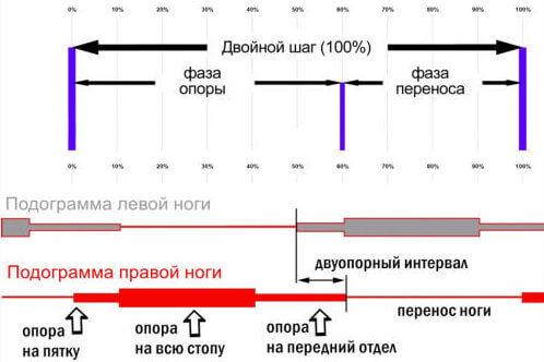 imitator-opornoy-nagruzki-korvit